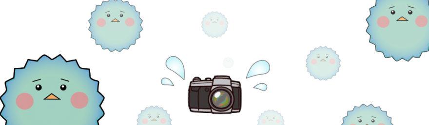 カビるカメラ